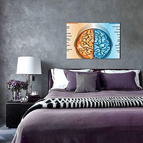 NINEHASA Cuadros Decorativos-Educativo Cerebro humano Lista de funciones izquierda y derecha Mentalidad Intelecto Neurología-Decoración Colgante para Paredes de Sala,Dormitorios y Cocina-Arte Mural
