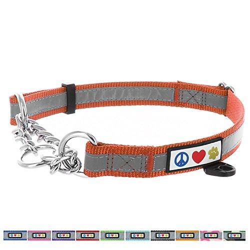 Pawtitas Ketting martingaal halsband, puppyband, reflecterende halsband voor training en gedragscontrole | Hondenhalsband voor Gehoorzaamheids middlegroot - Oranje martingaal halsband voor honden