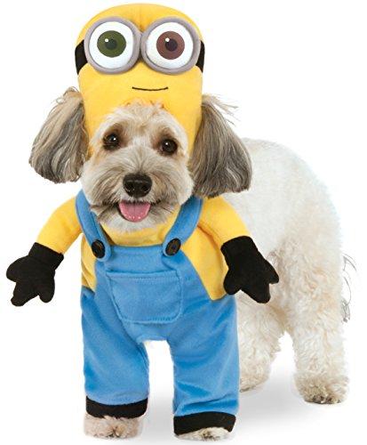 Minion Bob Arms Pet Suit, Large