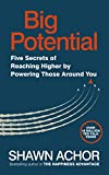 Big Potential: Five Secrets of Reaching Higher by Powering Those Around You