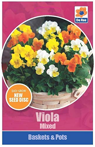 De Ree Paniers et Pots Viola Mixte Facile coloré 1 Paquet Graines Cultivez