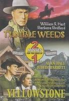 Tumbleweeds / Yellowstone