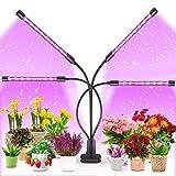 MOREASE Lampe de Croissance pour Plantes 84 LEDs Lampe de Plante à 4 Têtes...