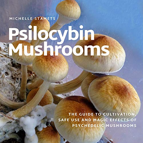 Psilocybin Mushrooms  By  cover art