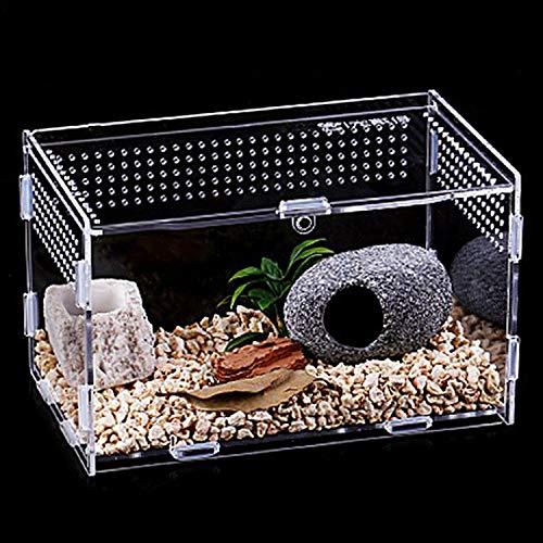 Urtone Reptil Fütterungsbox, Transparent Acryl Reptilienzuchtbox, Zuchtfall für Spide, Skorpion, Tausendfüßler, Gehörnter Frosch, Käfer