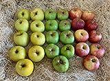 Caja Todo Manzanas 5 kilos - Producción propia Venta directa Producto fresco