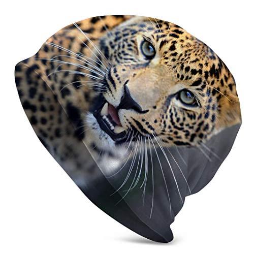 CVDGSAD Schließen Sie Angry Leopard Portrait Winter Skull Cap Beanie, Radhutkappen