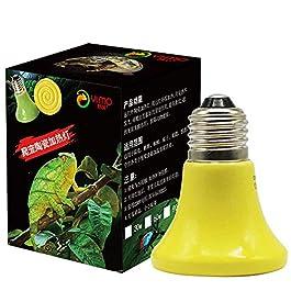 Heat Lamp Reptile Heat Bulb Heating Lamp Turtle Heat Lamp Set Turtle Heat Lamp Bulb Heat Lamp For Reptiles Heat Lamps Reptile Heat Lamp
