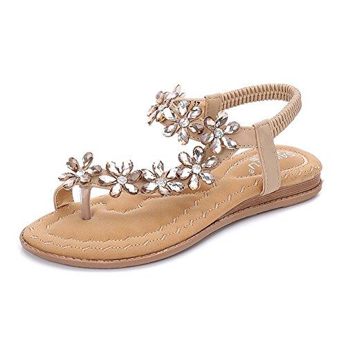 Meehine Women's Elastic Sparkle Flip Flops Summer Beach Thong Flat Sandals Shoes (7 B(M) US, Beige 01)