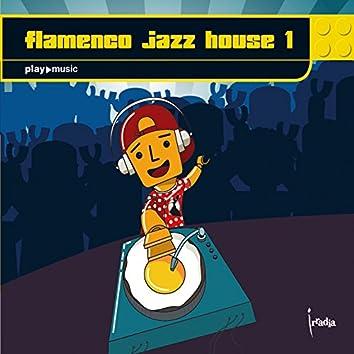Flamenco Jazz House 1