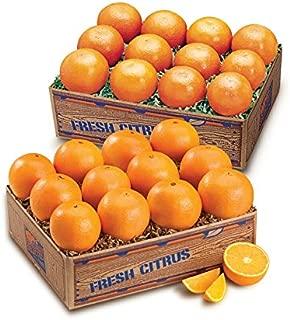 Juicy Indian River Florida Navel Oranges Grove Fresh 2 Trays, 20lbs
