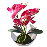 Orchid Plant for Artificial Flowers,Orchid Arrangement,plantas artificiales decorativas Silk Phalaenopsis Orchid Flower with Solid Plastic Vase for Environmental Protection (Pink)