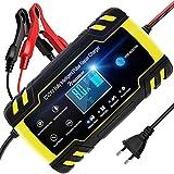 NWOUIIAY Chargeur de Batterie Intelligent Portable 8A 12V/24V avec LCD Tactile Écran Protections Multiples Type de réparation pour Voiture Moto Tondeuse et Bateaux etc.