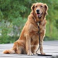 ネックレス 犬の綱小中および大犬ハイエナ競争ゴムバンド (Color : Black 1.2 wide, Size : 150cm)