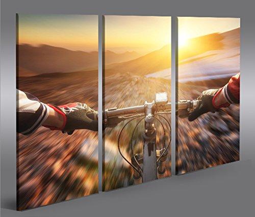 islandburner Bild Bilder auf Leinwand Mountain Bike V2 Down Hill Cross 3p XXL Poster Leinwandbild Wandbild Dekoartikel Wohnzimmer Marke islandburner