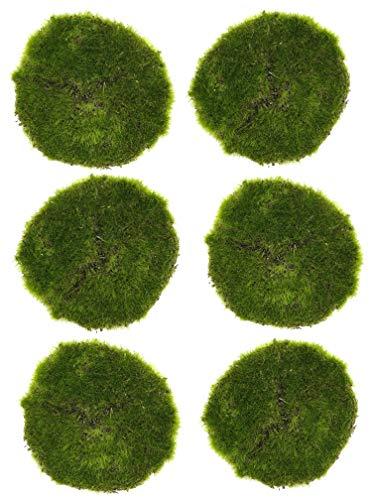 Künstliche Grasplatte Moosplatte Ziergras Ziermoos - Premium Qualität, 6 Stück (Ø 10 cm, Moosplatte)