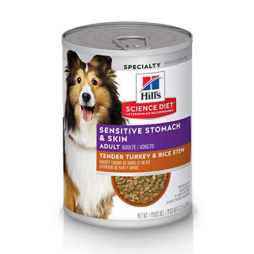 What Can I Feed My Dog With a Sensitive Stomach Uk?