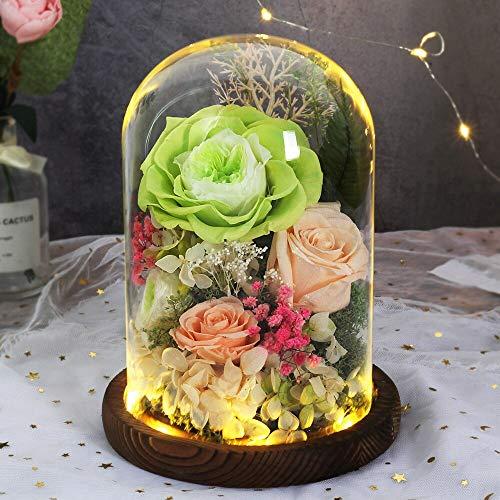 Flor eterna de la belleza y la bestia de la rosa de la flor inmortal en la cúpula de cristal con la lámpara LED Cumpleaños San Valentín