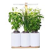 Lilo, le potager d'intérieur autonome Prêt à Pousser ❃ Jardinez toute l'année simplement ❃ inclus basilic, menthe et ciboulette