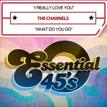 I Really Love You / What Do You Do (Digital 45)