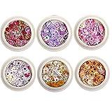TOSSPER 6 Caja De Uñas Set De Flores Seco Real Mini Applique Aplique Nail Art Pegatina Etiqueta De Uñas Decoración para Mujeres Chicas