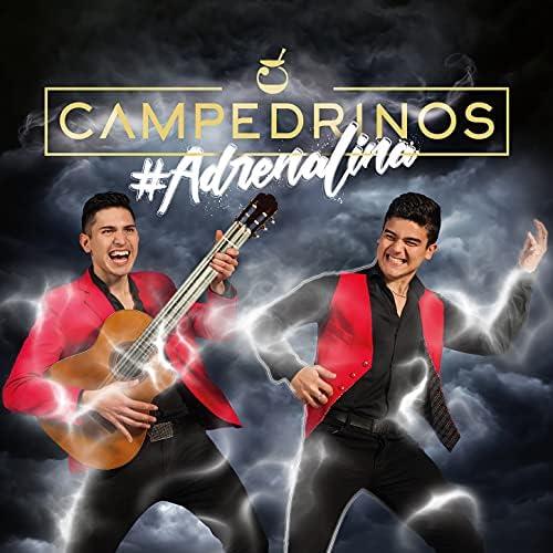 Campedrinos