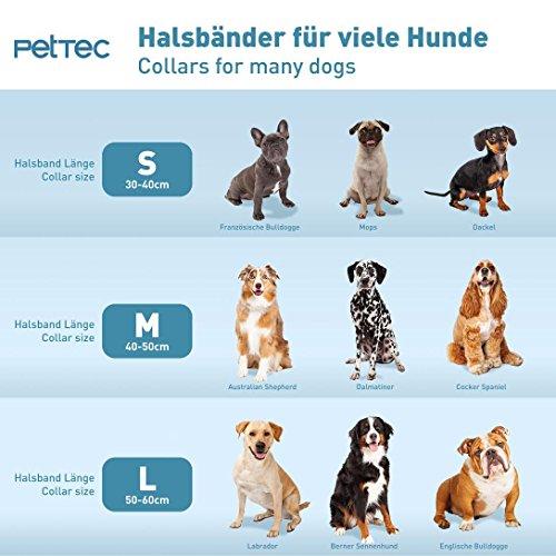 PetTec Hundehalsband aus Trioflex™ mit Polsterung, Braun, Wetterfest, Wasserabweisend, Robust - 3
