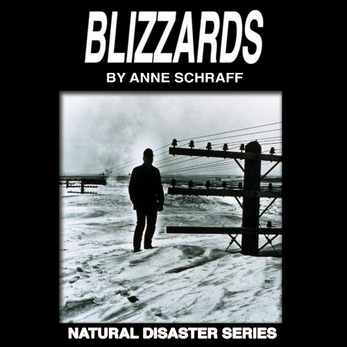Blizzards audiobook cover art