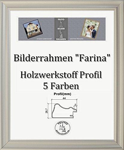 Farina Barock Bilderrahmen 90 x 170 cm Farbe und Verglasung wählbar 170 x 90 cm Hier: Silber matt mit Acrylglas Antireflex 2 mm