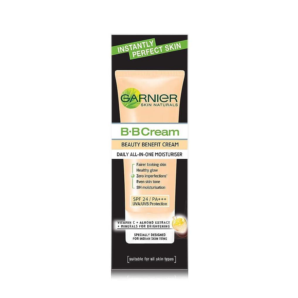 マウンドボイドボトルネックGarnier Skin Naturals Instantly Perfect Skin Perfector BB Cream, 30g