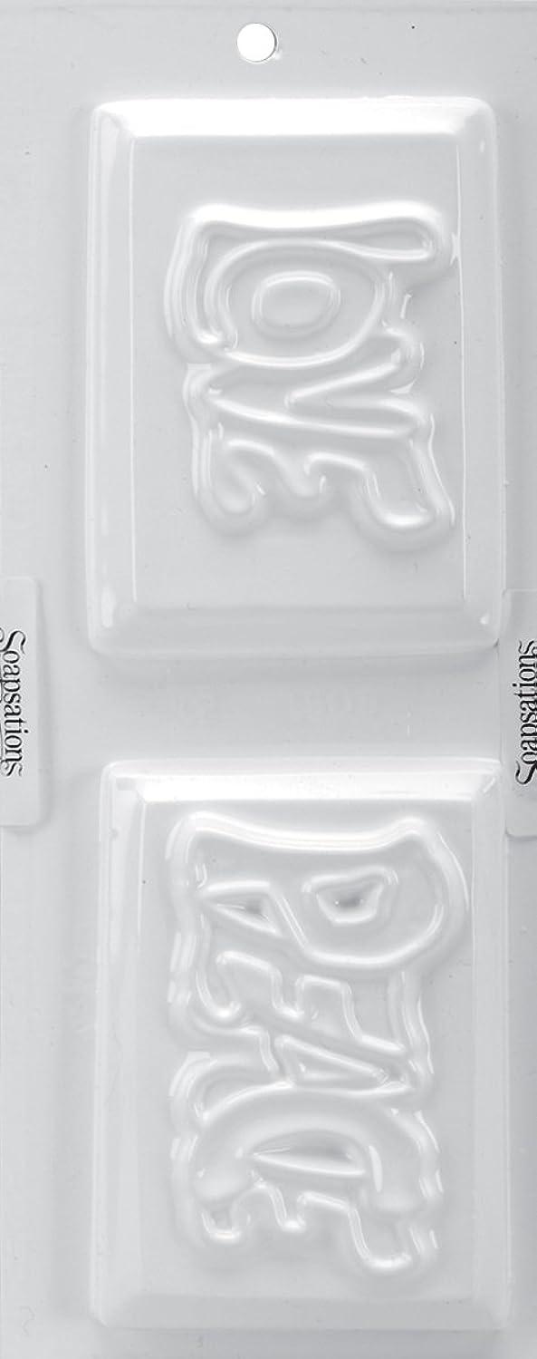 工夫する和らげるシフトSoapsations 石鹸モールド 4