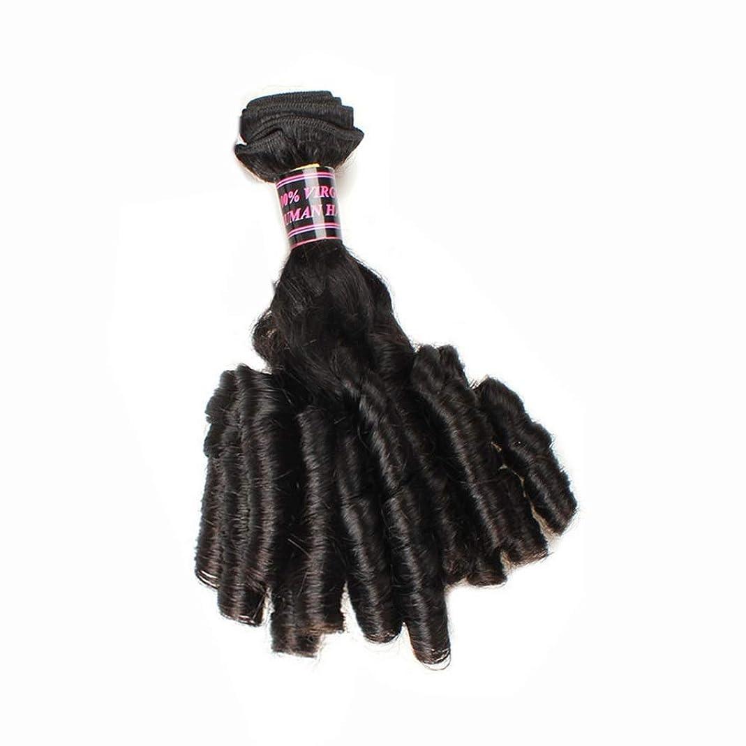 速記相手フェロー諸島YESONEEP ブラジルのFunmi人間の髪の毛ショートカーリー織り緩い波スパイラルカール髪の束ロールプレイングかつら女性のかつら (色 : 黒, サイズ : 10 inch)