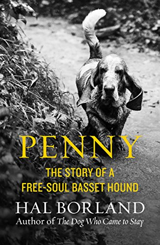 Penny: The Story of a Free-Soul Basset Hound (English Edition)