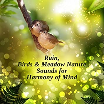 Rain, Birds & Meadow Nature Sounds for Harmony of Mind: 7 Chakra Cleansing Opening, Tibetan Meditation