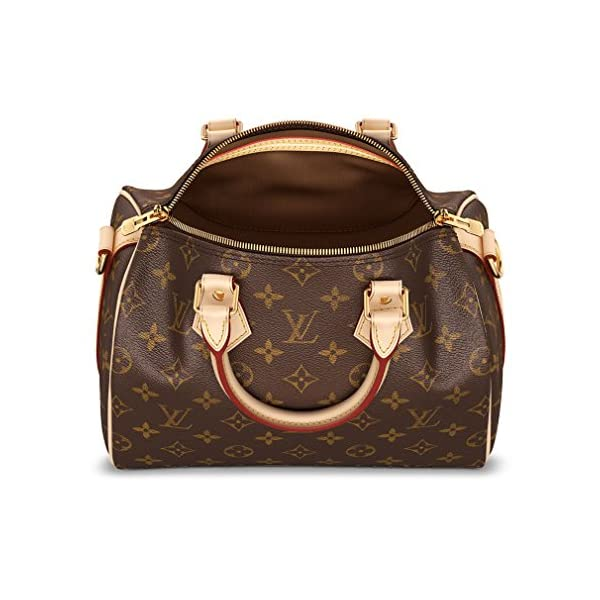 Fashion Shopping Louis Vuitton Monogram Crosss Body Leather Handles Canvas Handbag