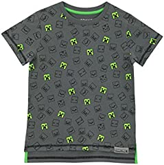 Minecraft Camiseta Estampada para Niño Gris