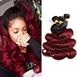 Seelaak Ombre Red Bundles Body Wave Hair 3 Bundles Ombre Burgundy Two Tone Colors 10A Brazilian Virgin Remy Hair Extensions for Black Women (16 18 20)