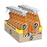 Cif Casa Expert Sgrassatore Universale Spray Multisuperfici, Maxi Formato, 12 Pezzi da 650 ml
