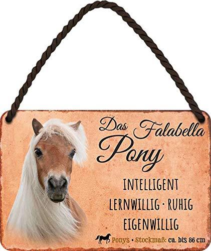 """Blechschild Pferde Spruch & Motiv """"Das Falabella Pony"""" Deko Pferd Hängeschild Türschild Metallschild Hauseingang Reiten Geschenk zum Geburtstag oder Weihnachten Pferdebesitzer Fans 18x12 cm"""