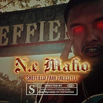 Sheffield Park Freestyle