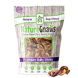 Nature Gnaws Braided Bully Stick Bites for Small Dogs – Premium Natural Beef Bones – Bite Sized Dog Chew Treats for Light Chewers – Rawhide Free – 2-3 Inch