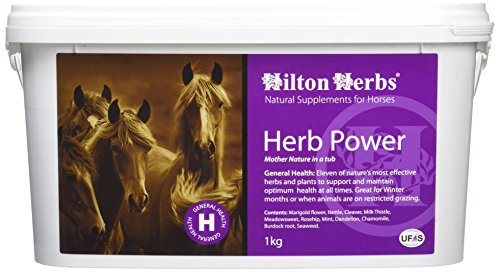Hilton Herbs Herb Power 1 kg Seau Complément Alimentaire Cheval Soutien Général par des Plantes Médicinales et des Vitamines