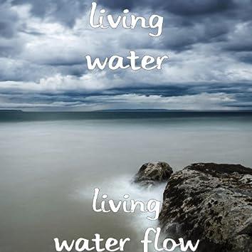 Living Water Flow