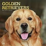 Golden Retrievers 2020 - 16-Monatskalender mit freier DogDays-App: Original BrownTrout-Kalender [Mehrsprachig] [Kalender] (Wall-Kalender)