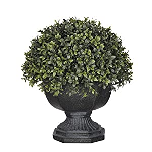 House of Silk Flowers Artificial Half-Ball Boxwood Topiary in Black Garden Urn