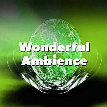 Wonderful Ambience