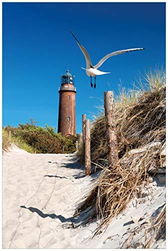 Wallario Poster - Möwe am Strand mit Leuchtturm in Premiumqualität, Größe: 61 x 91,5 cm (Maxiposter)