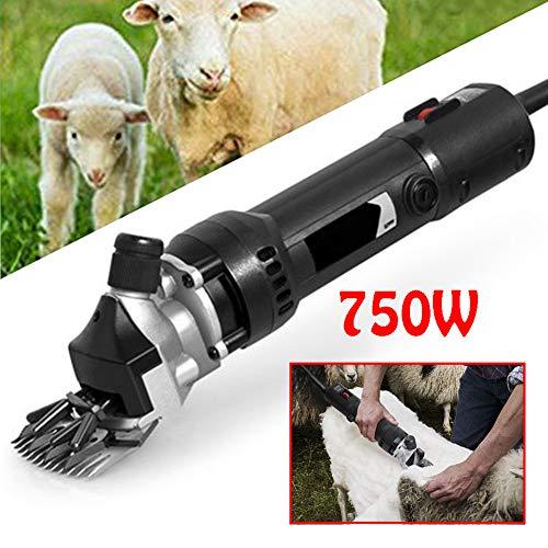 legou - Cortapastas eléctrico para ovejas (750 W), Color Negro, B