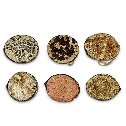 REPEAK Coconut Bird Feeder Halves, Pack of 6 Different Flavours Including...