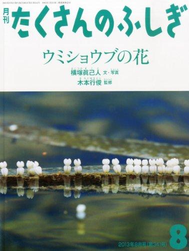 月刊 たくさんのふしぎ 2013年 08月号 [雑誌]